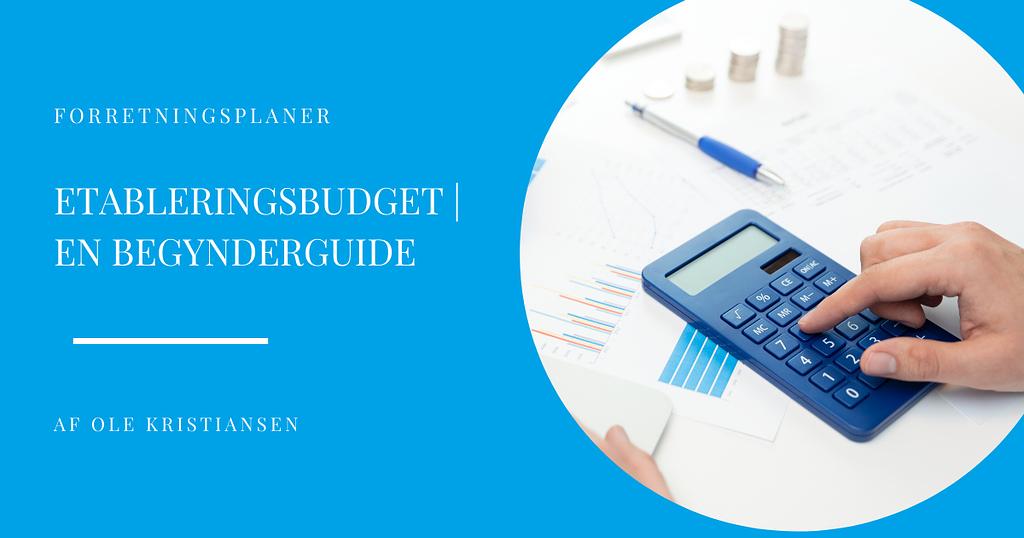 etableringsbudget en begynderguide