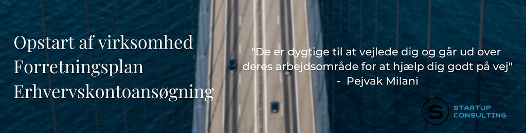 personlige forhold startup consulting