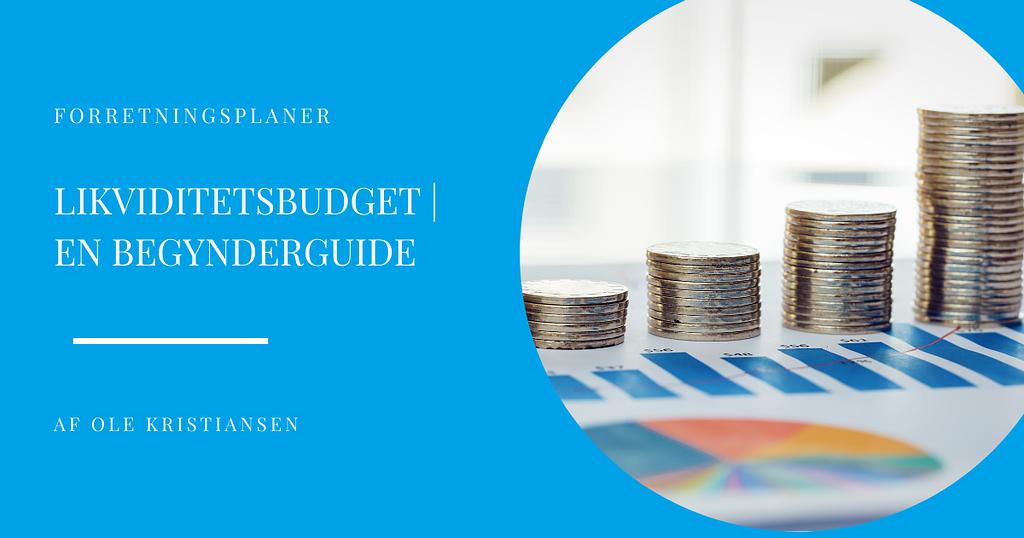 likviditetsbudget en begynderguide